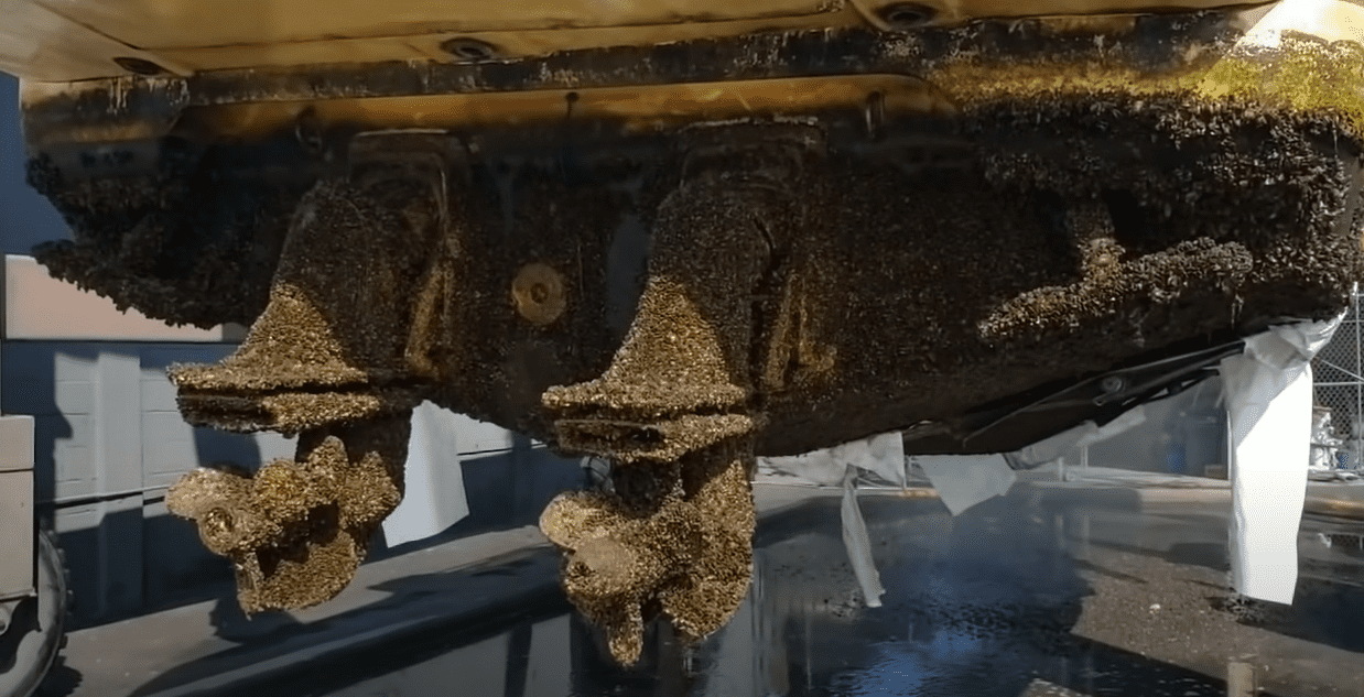 how to remove barnacles from a boat