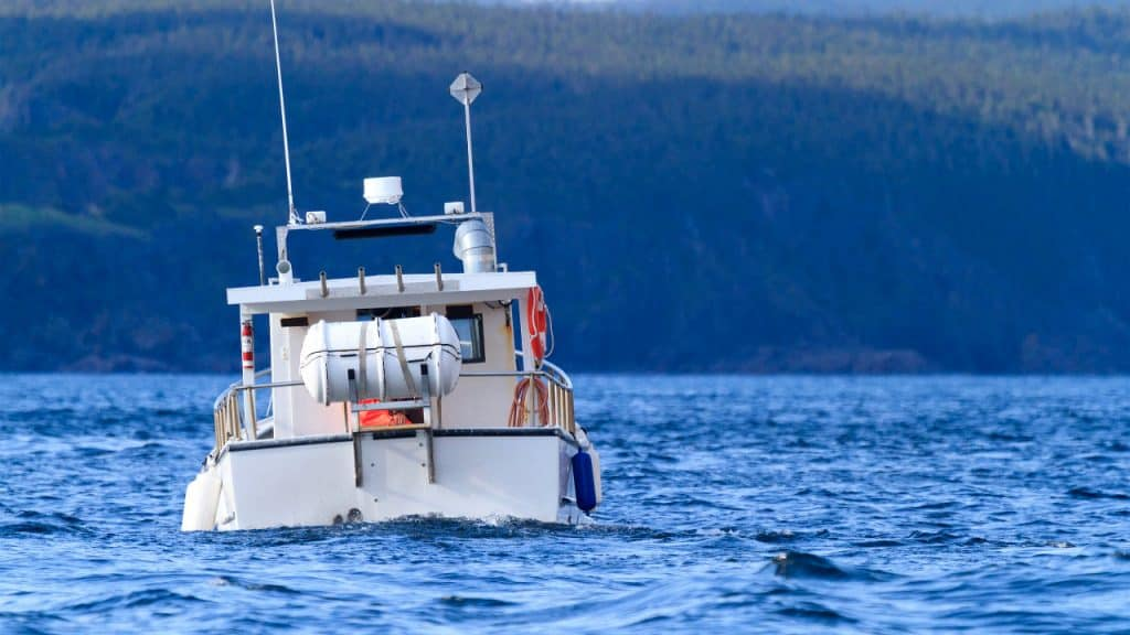 who is responsible for performing the pre-departure check of a recreational boat